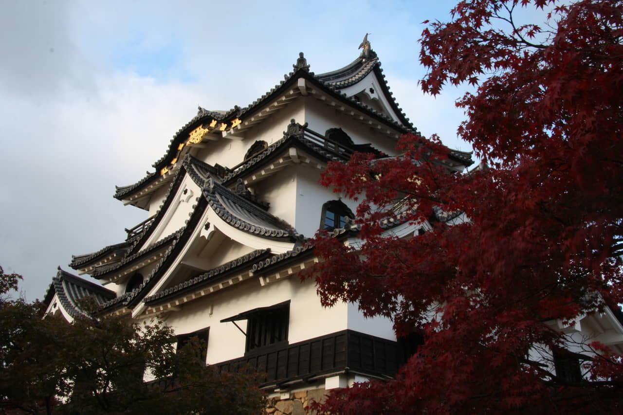 彦根城(滋賀県彦根市)~四季の色彩に満たされた魅惑の名城