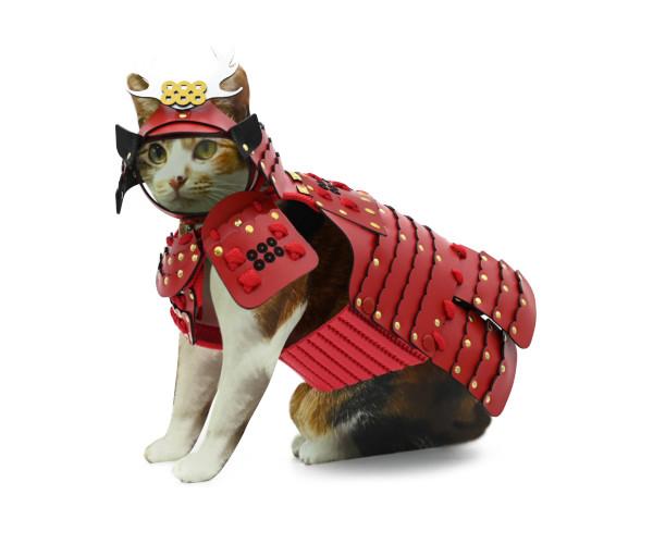 猫ちゃん 犬ちゃん 甲冑シリーズ