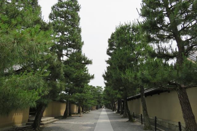 【青天を衝け】土方歳三に取り押さえられた大沢源次郎は実はおとなしく捕縛されていた!
