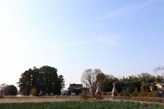 渋沢栄一幼少期の思い出の地「諏訪神社」 ─青天を衝け ゆかりの地─